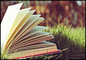 book_03_by_alternative_rock1